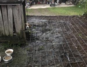 犬小屋 コンクリ