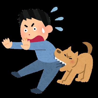 犬の問題行動がまさかの一千万超えの支払いに!?