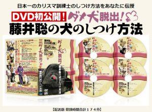 藤井聡 DVD