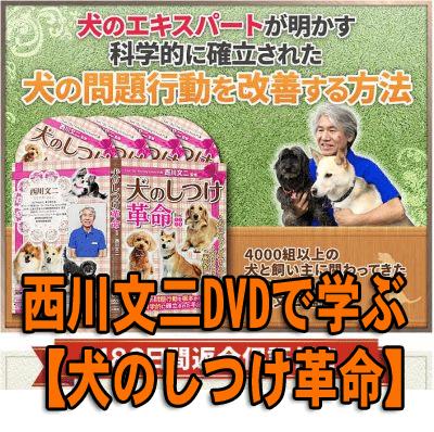 西川文二DVDで学ぶ 【犬のしつけ革命】