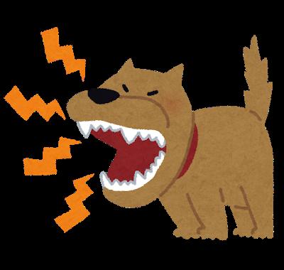 吠える犬しつけ